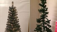 What to do when your rubbish Christmas tree doesn't match your expectations