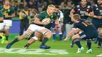 French overpowered by resurgent Springboks