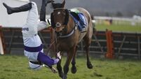 Cork jockey escapes injury after spectacular fall