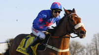 Can classy Cue Card get his happy ending?