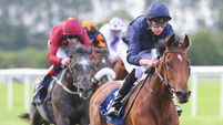 Ballet Shoes waltzes away with  Coolmore Ivawood Stakes