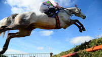 Ballycasey stars as Wille Mullins claims Fairyhouse