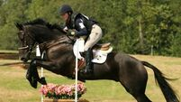Irish-breds top of the eventing class