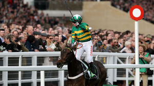 Noel Fehily truly at his finest in the autumn of his career