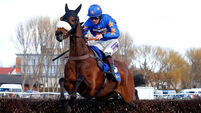 Vicente has each-way appeal in Grand National