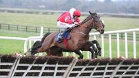 Fairness and common sense sadly lacking in Gowran case