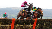 Jade a strong each-way fancy in Mares' Hurdle