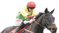 Sizing John case makes you wonder how many horses are running over clearly unsuitable trips?