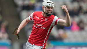 Cuala just got a better handle on Ballyea's big dogs