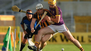 Kilkenny tick all the boxes in easing past Wexford