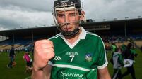 Gearoid Hegarty and Shane Dowling do the damage as Limerick run riot