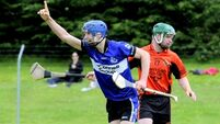 Cork club round-up: Harnedy impressive as Imokilly beat students