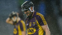 Wexford's Liam Óg McGovern suffers torn cruciate