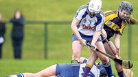Wexford withstand Déise's late rally