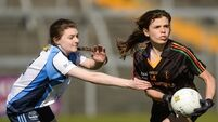 John the Baptist Community School bring All-Ireland title to Limerick