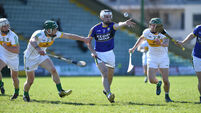 Offaly in last eight after stern 14-man Kerry test