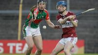 Borris-Ileigh pip battling Loughmore-Castleiney as Tipp last four decided