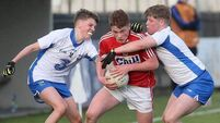 Cork crush Waterford by 41 points in quarter-final mismatch