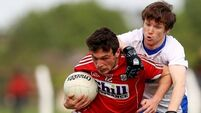 Veteran O'Connor steers Cork from Déise calamity
