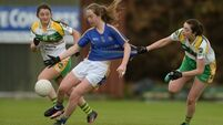 Derby joy for Dungarvan