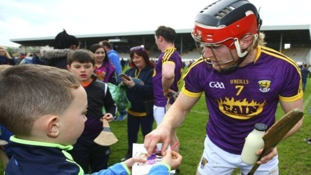 Getting to know the 'unknown' hurlers of Wexford