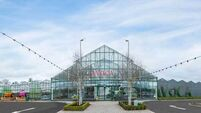 Avoca examining Cork expansion