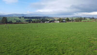 Compact Residential Farm in Waterford for €10,000/acre