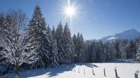 Ski resorts to suit all tastes and budget