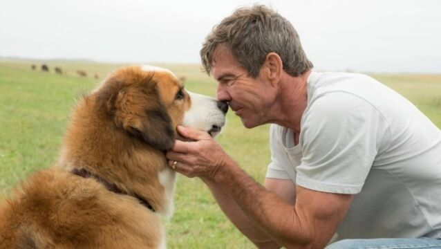 Dennis Quaid: I can be a really embarrassing dad if I want to be