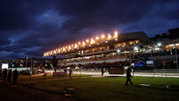 A general view of Shelbourne Park  23/9/2017