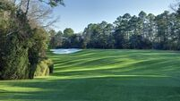 Magnolia pleads the Fifth: Augusta's hole 5 in line for change