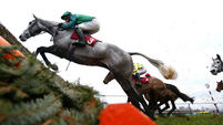 Bristol De Mai out to show Gold Cup class at Cheltenham