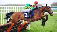 Defi Du Seuil in form and set for February return