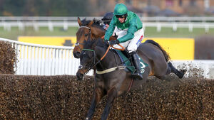 Sceau Royal set to miss Arkle after minor setback