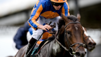 Ascot preview: Ideal conditions for Sioux Nation