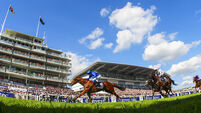 Irish Derby likely next stop for Epsom runner-up Dee Ex Bee