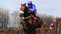 Cue Card unlikely to run in King George VI Chase at Kempton