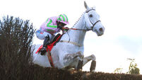 Baie Des Iles and Katie Walsh all the rage in National