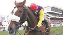Johnson's joy as relentless River flows to Gold Cup glory