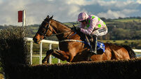 Douvan 'not far away' from return