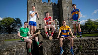 Limerick's Declan Hannon, Waterford's Kevin Moran, Cork's Seamus Harnedy, Clare's Pat O'Connor and Niall O'Meara of Tipperary 30