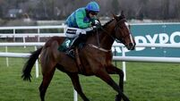 Watch Selected carefully but Smart cracking Cheltenham value