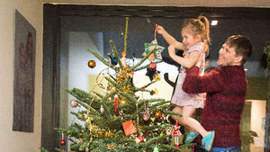 Everything you need to know about decorating a tree for the first time