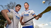 Walsh Park dilemma for Waterford