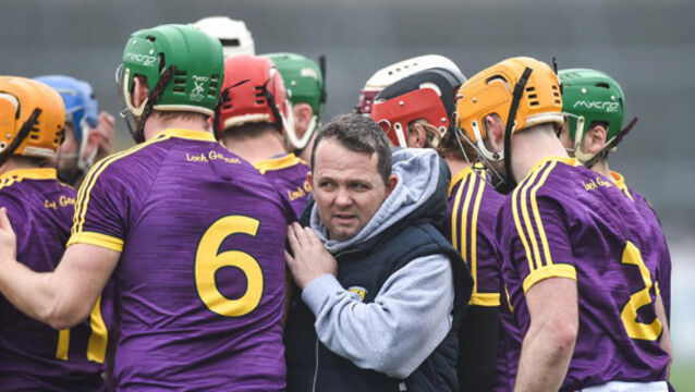 Davy Fitzgerald brands talk of Leinster or All-Ireland glory 'rubbish'