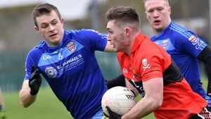 Spillane and O'Shea steer UCC to victory