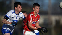 Waterford v Cork - McGrath Cup