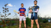 DCU chasing titles and respect in Fitzgibbon Cup final