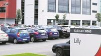 Cork's Eastgate Business Park gilded by Lilly deal on €20m office for new jobs