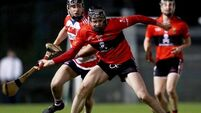 County stars lead UCC charge past CIT